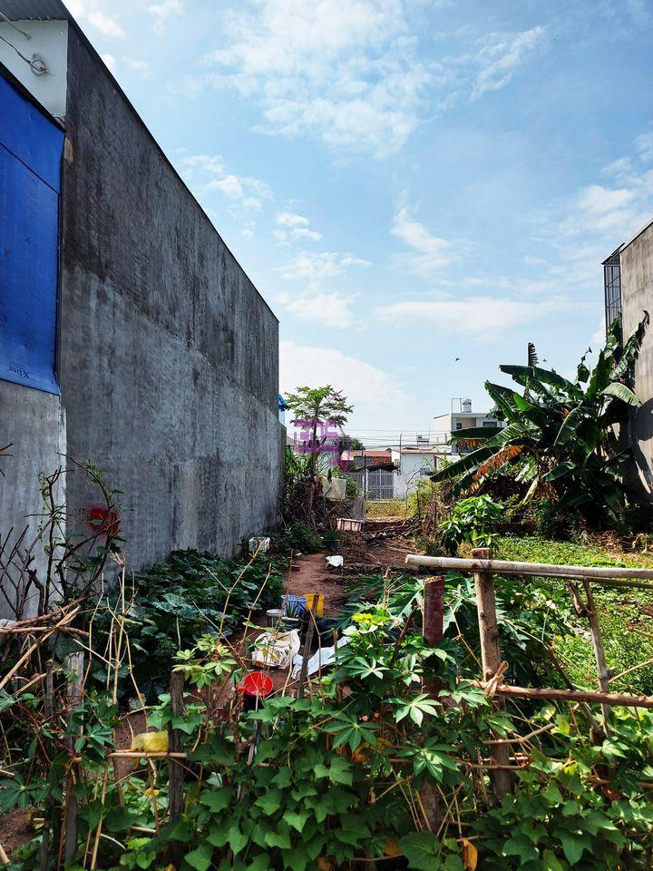 Bán đất 110m2 đối diện trường Nguyễn Khuyến, giấy tờ pháp lý rõ ràng-2