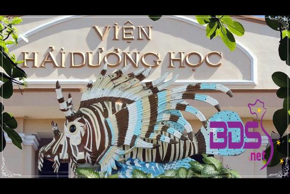 Viện hải dương học Nha Trang - Bảo tàng sinh vật biển đầu tiên ở Việt Nam