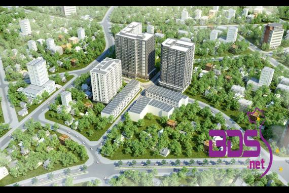 Chung cư Thuận Giao Phát - Thiết kế hài hòa giữa các mảng xanh, công viên tại Thuận An