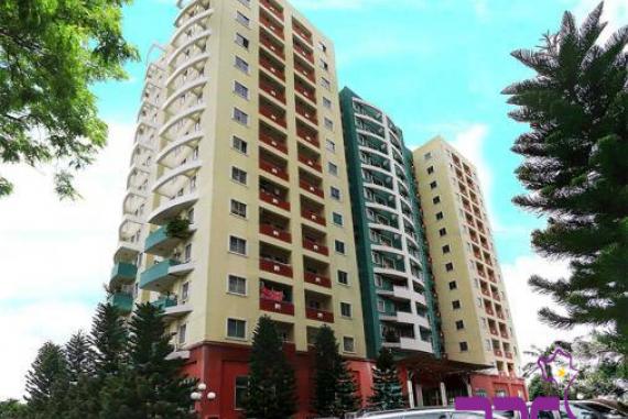 Triều An Tower - Khu căn hộ có vị trí thuận lợi tại Bình Tân