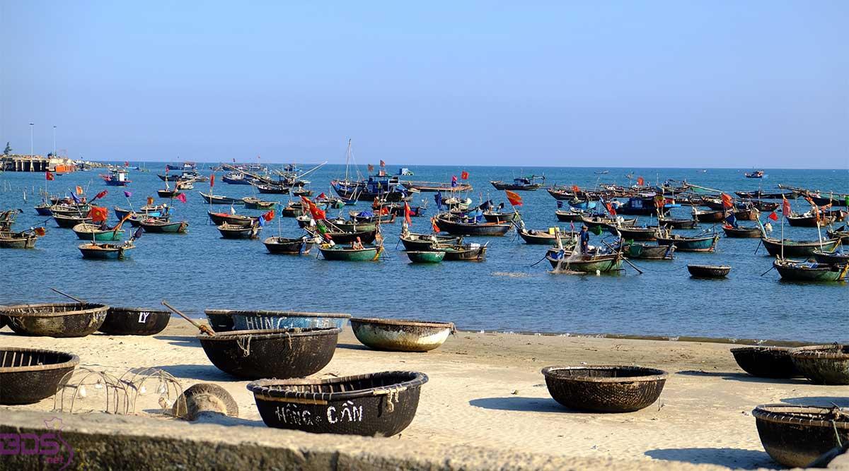 Những chiếc thuyền đánh bắt cá