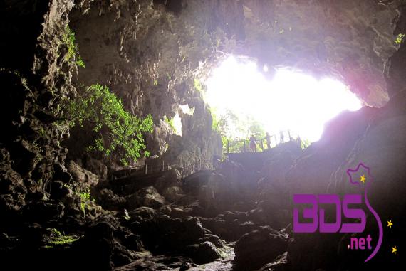 Hang Đầu Gỗ (The Wood Hole) - Mang vẻ đẹp cổ kính, hoang sơ với nhiều hình dạng đặc biệt và kỳ lạ